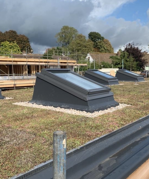 Green Roofing Exeter and Devon - SPS Roofing Ltd